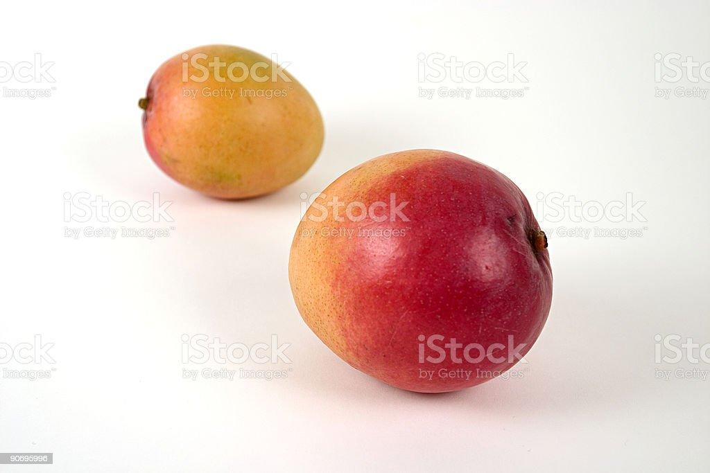 Mango02 stock photo