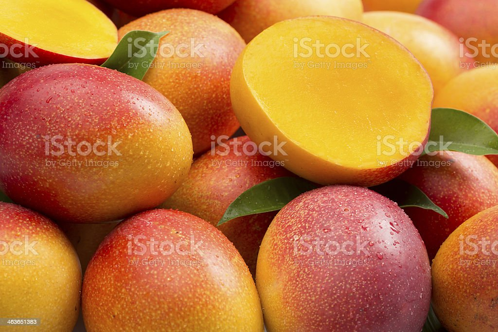 Mangoes composition stock photo