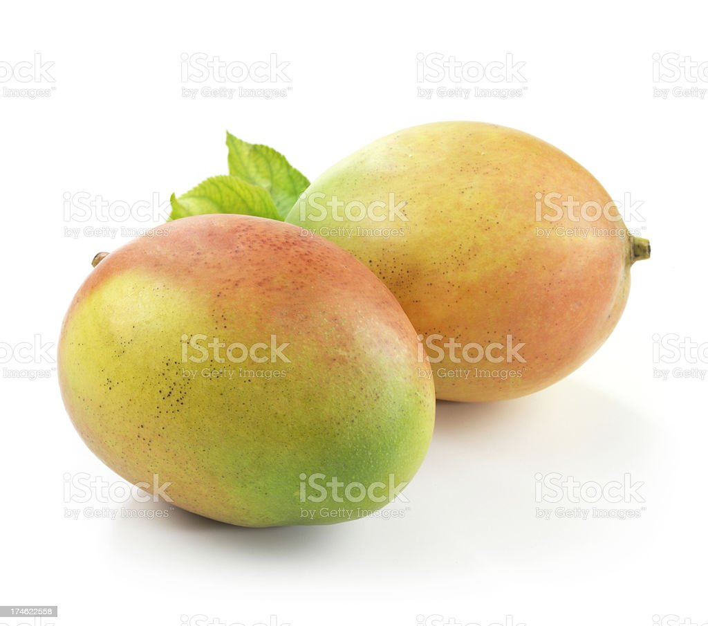 Mangos with Leafs royalty-free stock photo