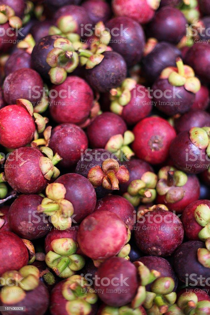 mangosteen exotic tropical fruit stock photo