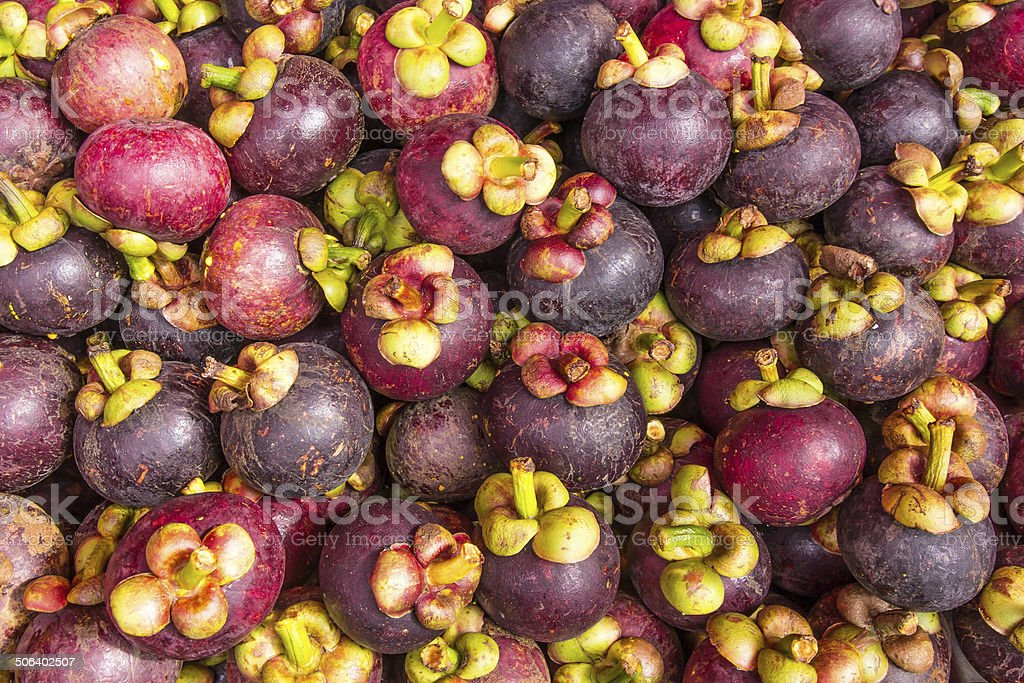 Mangosteen is a popular fruit in Thailand stock photo