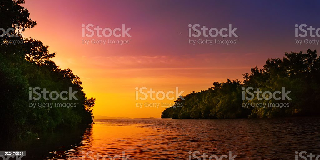 Mangrove blue river open sea Trinidad and Tobago colourful sunset stock photo