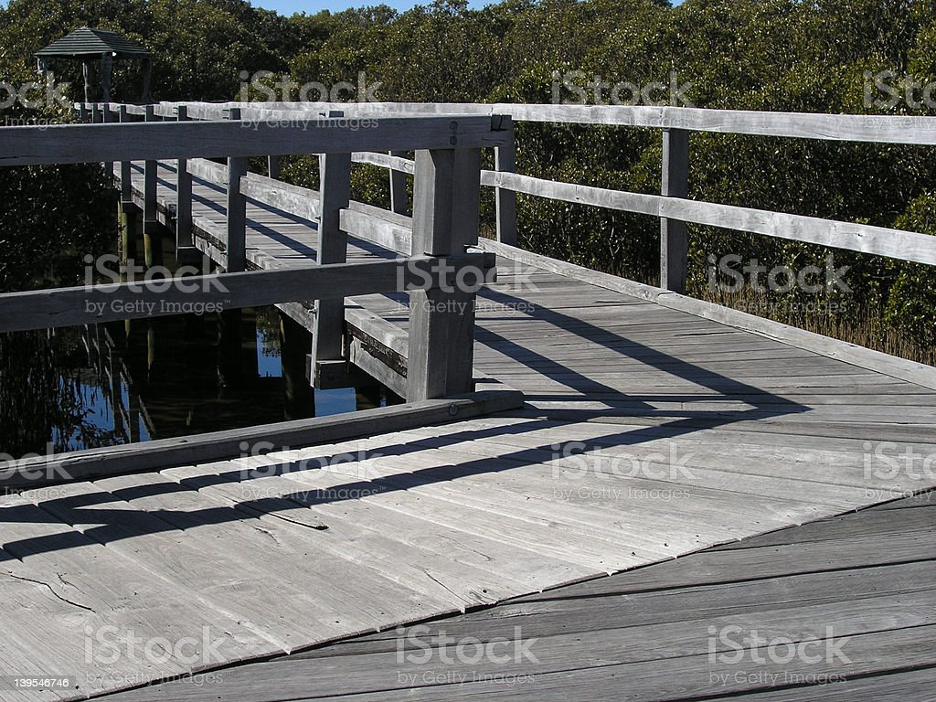 Mangrove boardwalk royalty-free stock photo