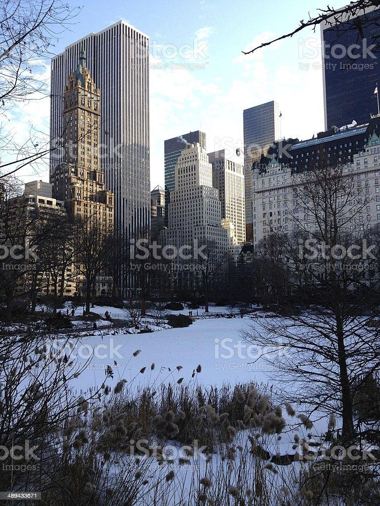 Manhattan in winter royalty-free stock photo