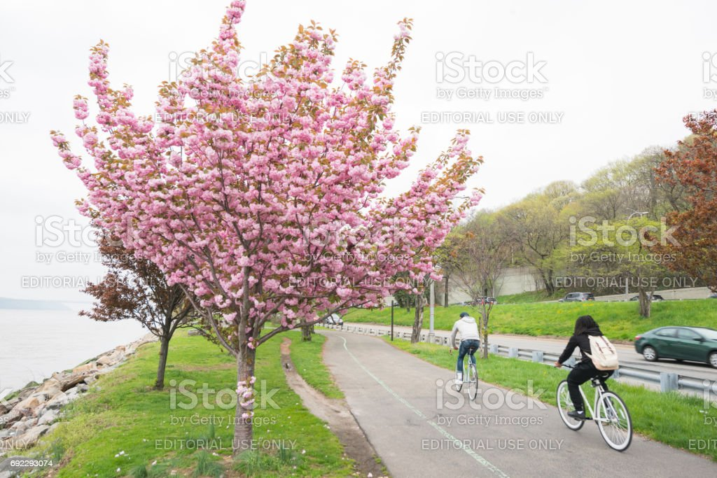 Manhattan's Riverside Park Bike Path on Spring Day NYC stock photo