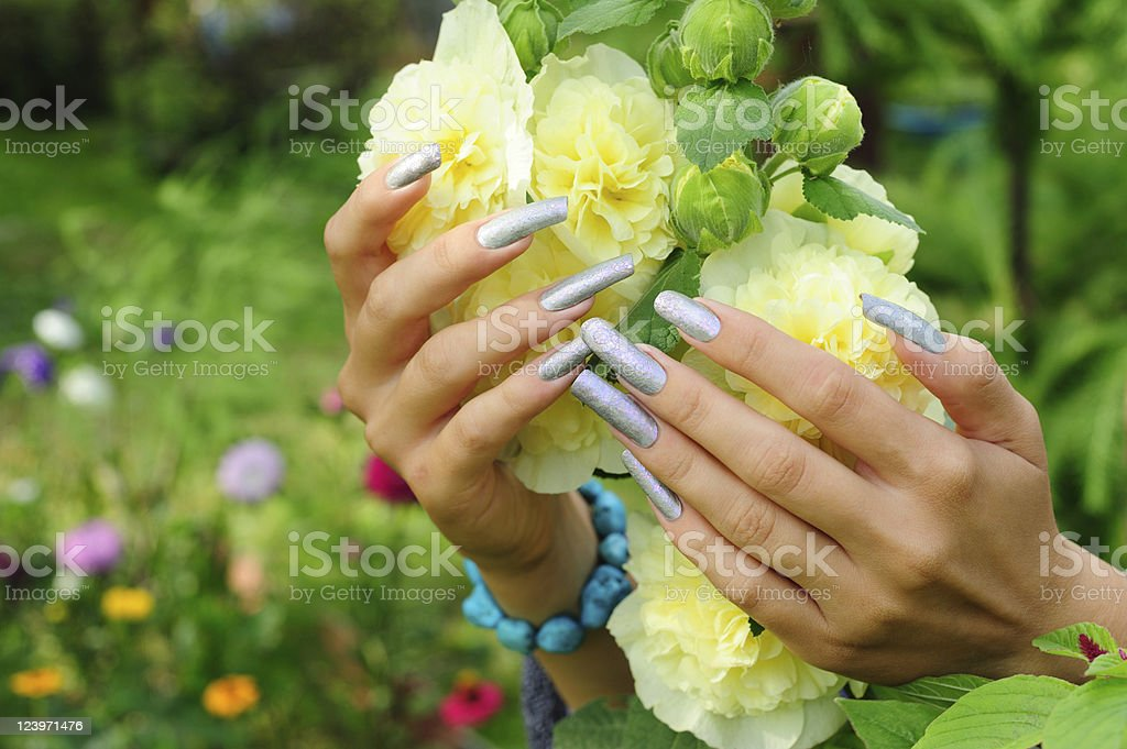 Manicure on real nails and yellow hollyhock flower stock photo