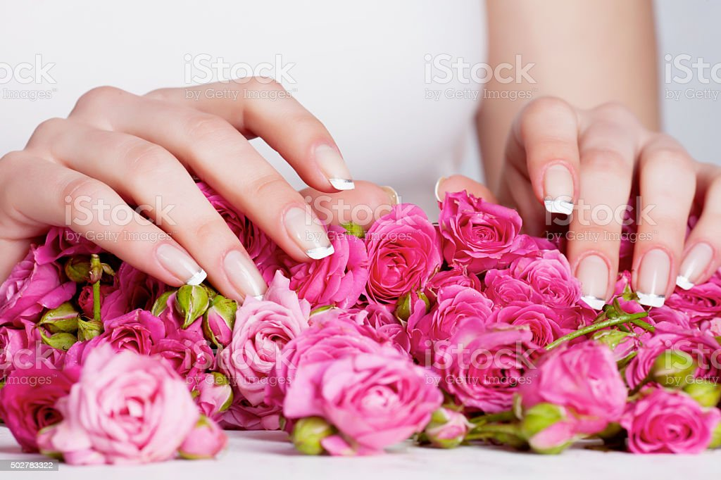 Manicure on the roses stock photo