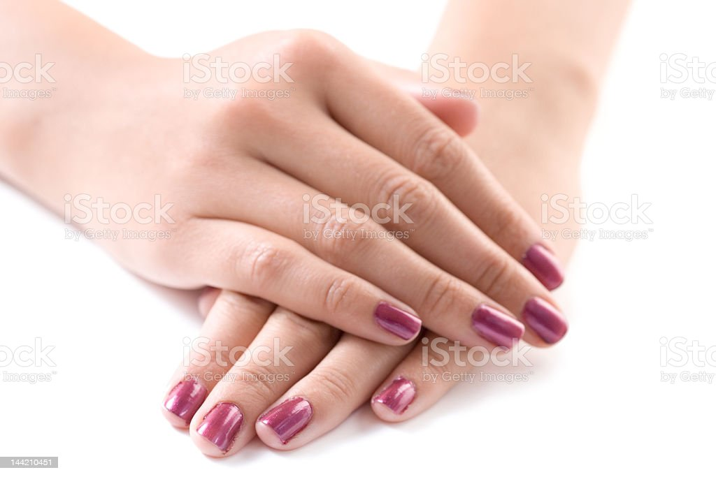 Manicured female hands with dark pink nail polish royalty-free stock photo