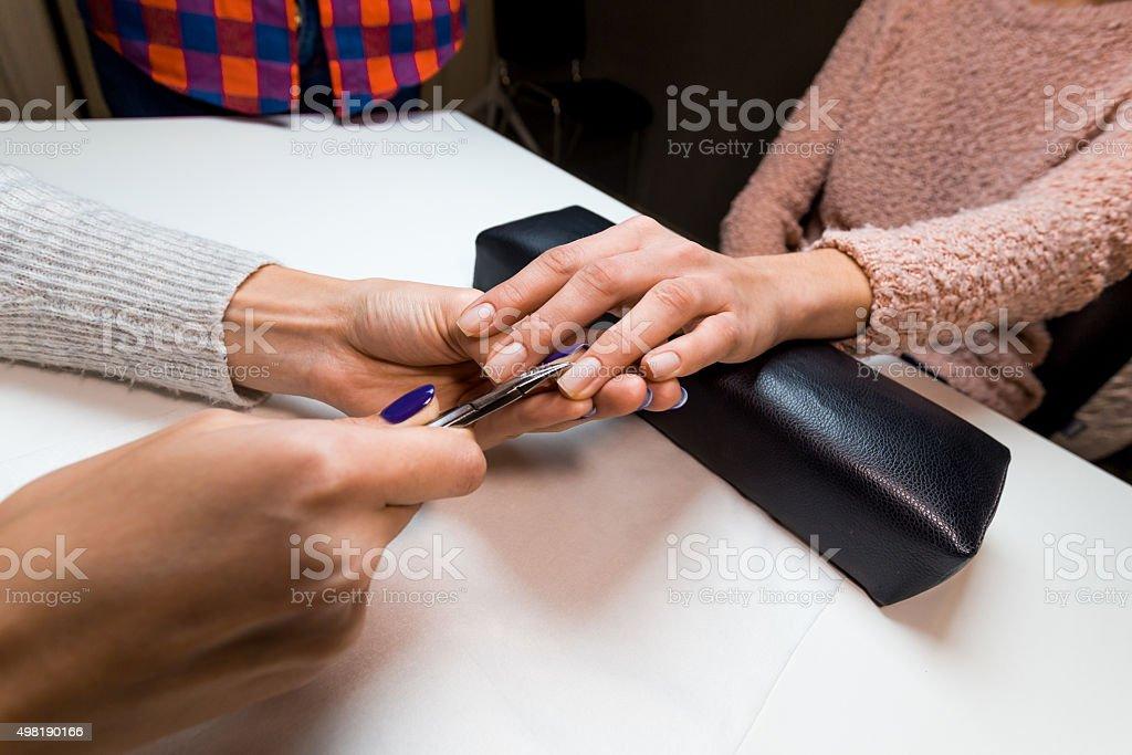 Manicurist make manicure client in nail salon stock photo