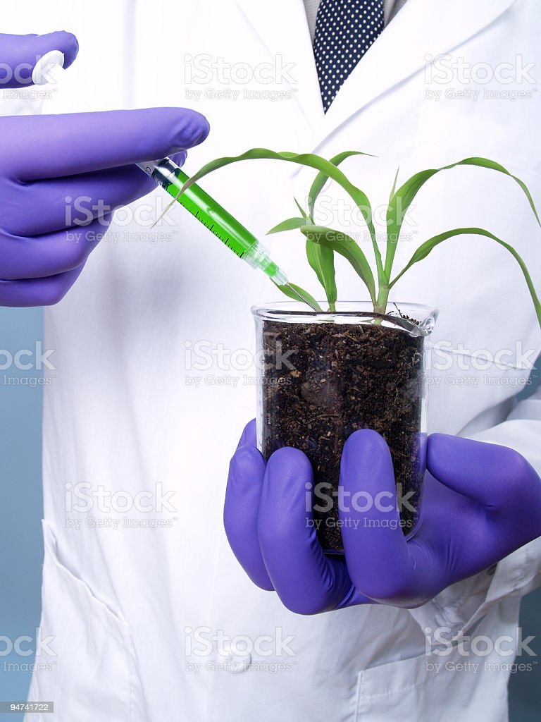 Manipulating Nature royalty-free stock photo