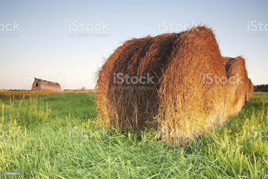 Manitoba Hay Bale royalty-free stock photo