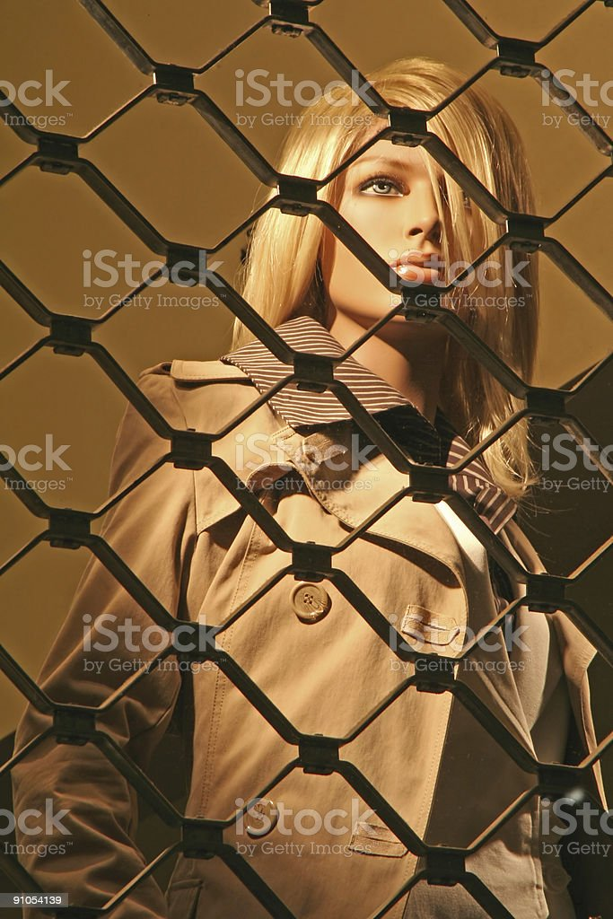 Mannequin at night royalty-free stock photo