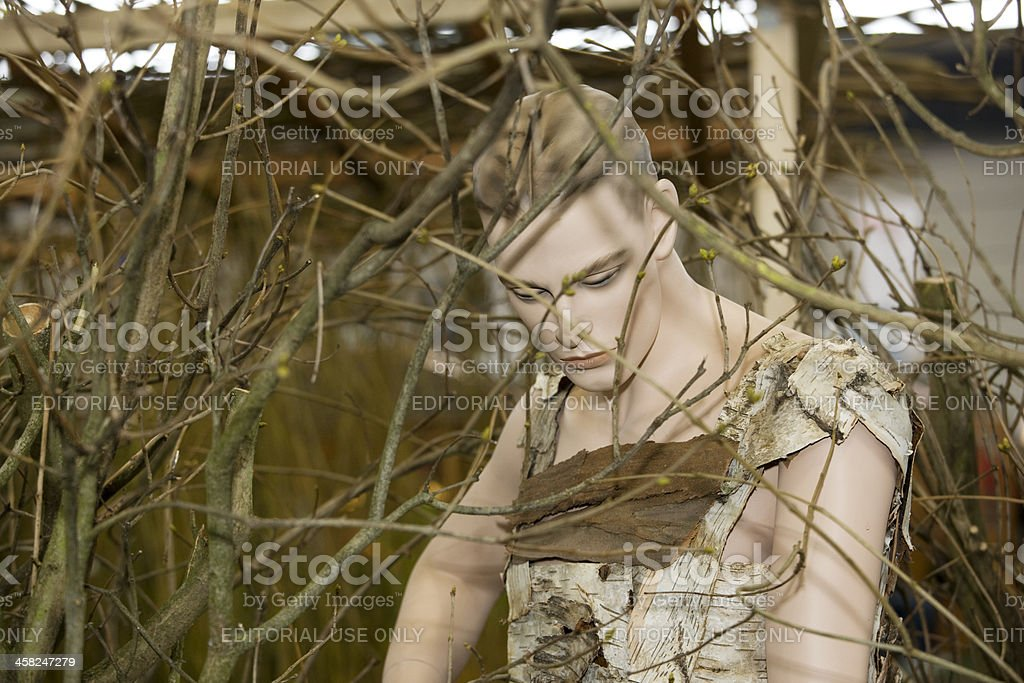 mannequin in bark costume royalty-free stock photo