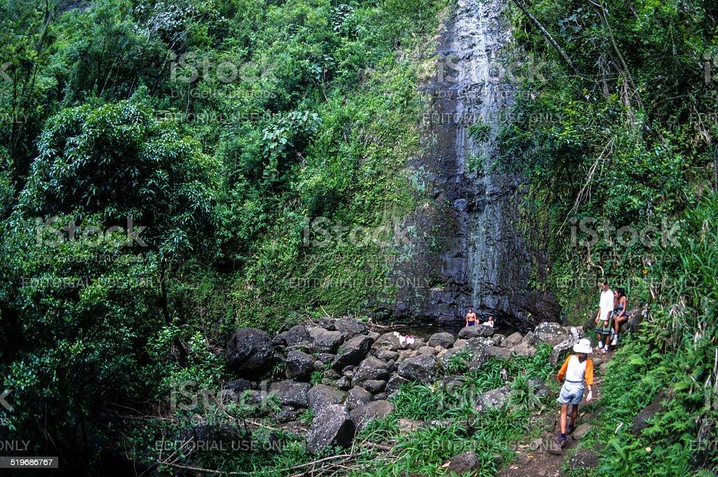 Manoa Falls stock photo