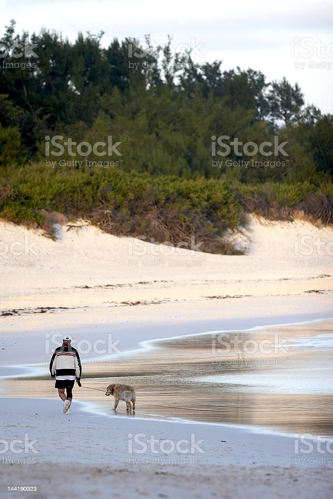 Mans best friend, a walk on the beach royalty-free stock photo