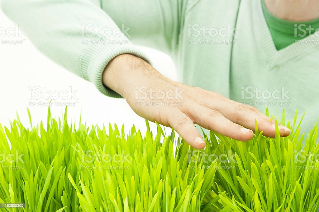 Man's hand touching green grass royalty-free stock photo
