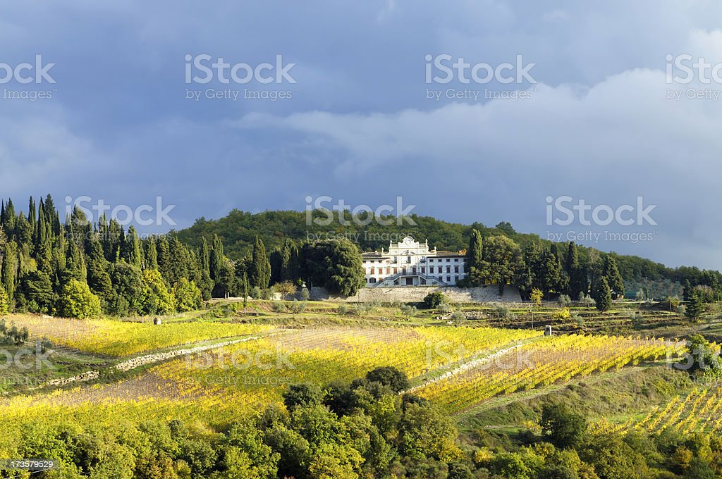 Mansion and vineyards royalty-free stock photo