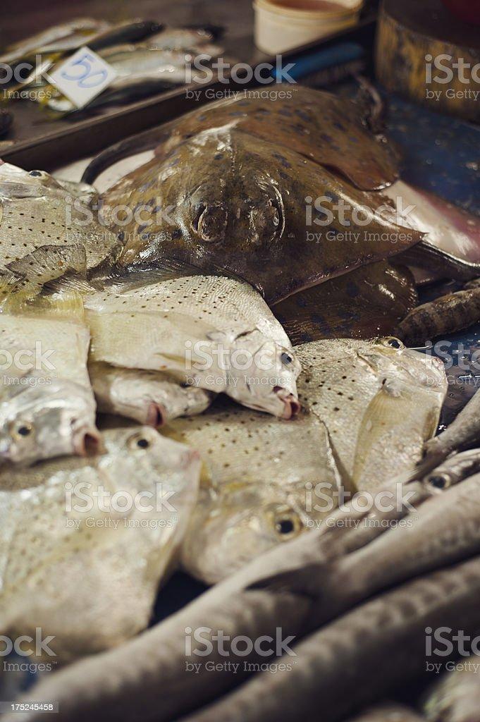 Manta Ray for Sale royalty-free stock photo