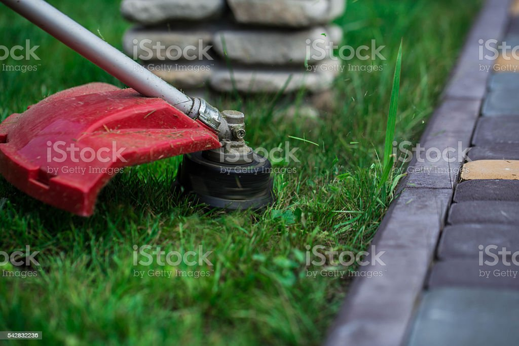 manual lawn mower on the background of green grass stock photo