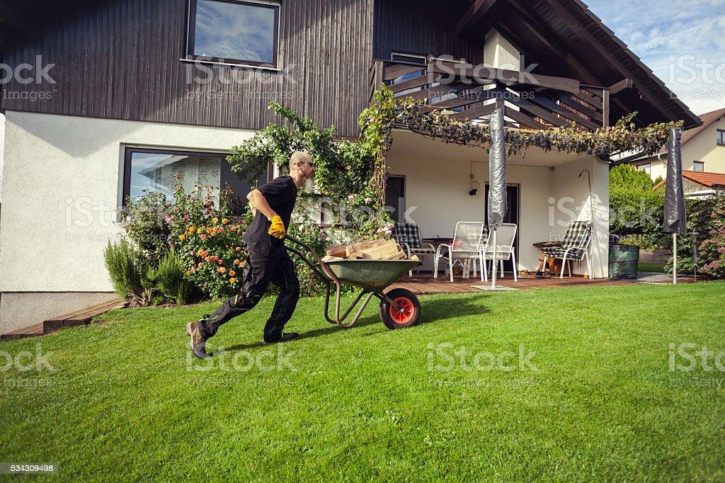 Manual worker pushing wheelbarrow loaded with firewood stock photo