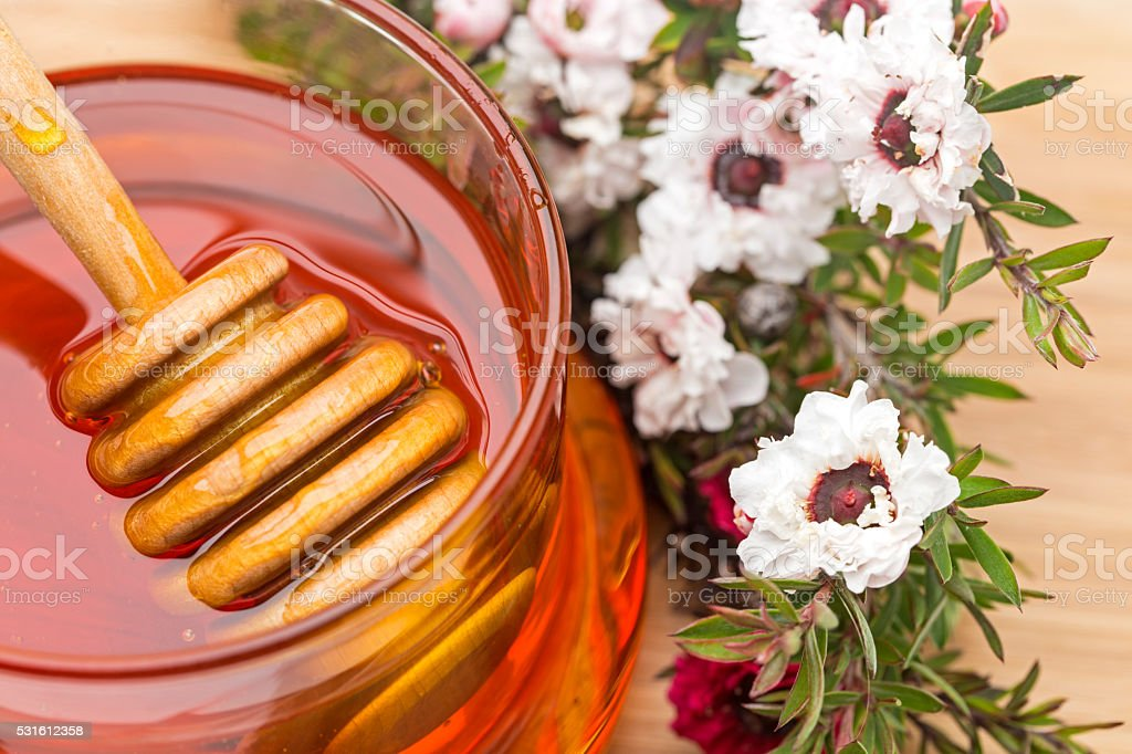 Manuka Flowers and Honey stock photo