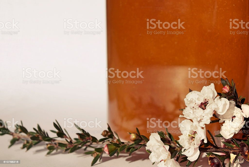 Manuka Honey and Flower stock photo