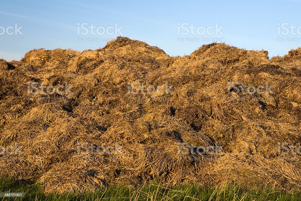 manure royalty-free stock photo