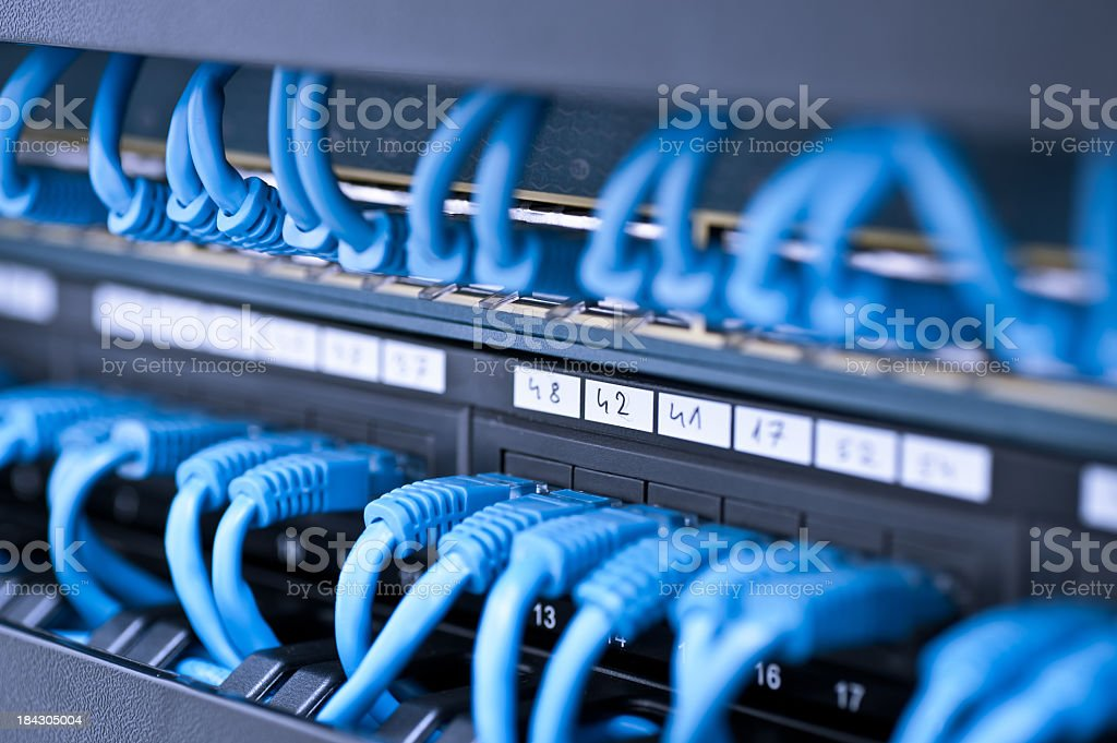 Many blue wires in a network hub stock photo