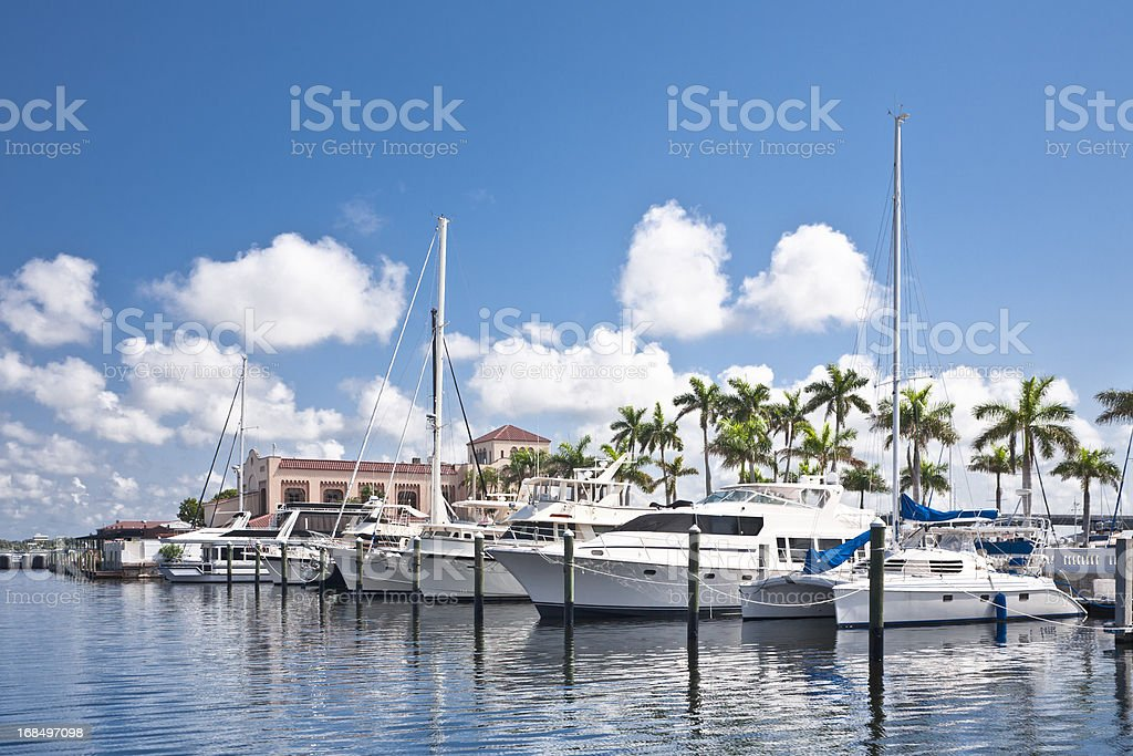 Many boats docked at land with palm trees stock photo