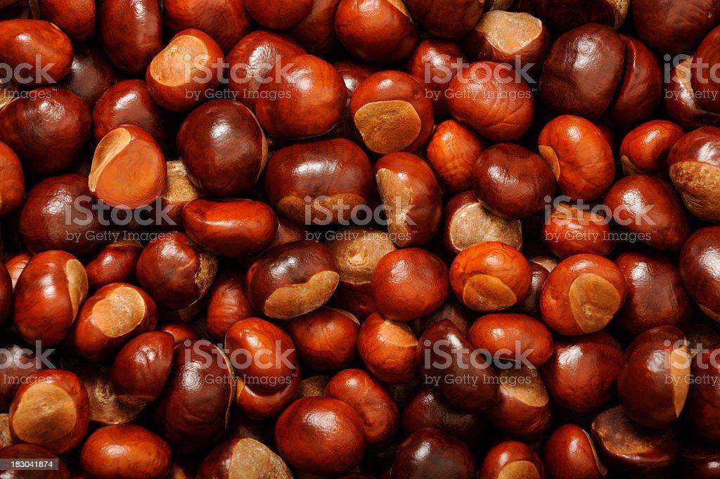Many chestnuts royalty-free stock photo