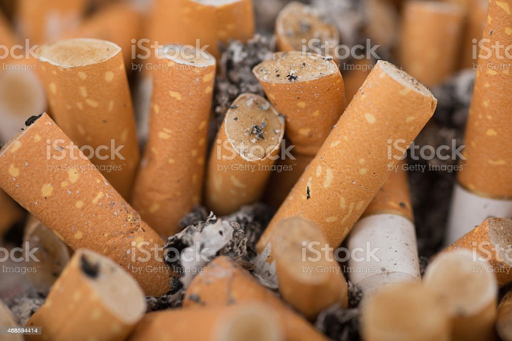 Many cigarettes macro background in full-frame stock photo