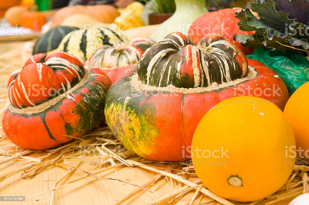 Many colourful decorative gourds stock photo