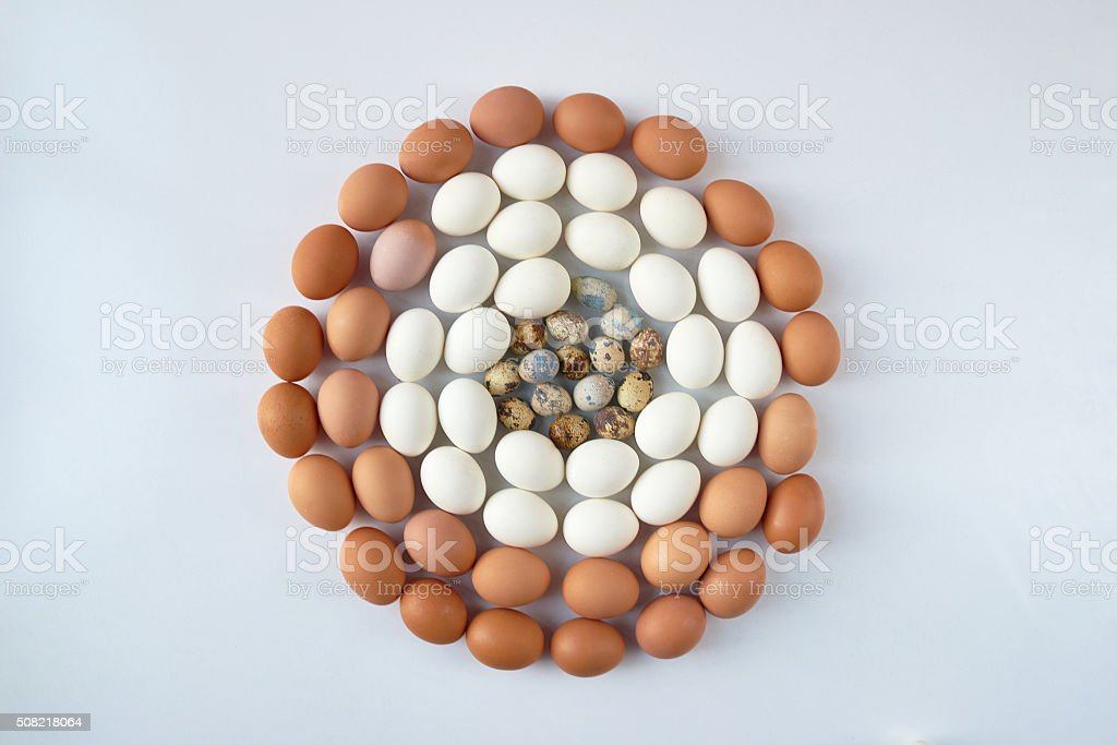 Many eggs in circle stock photo