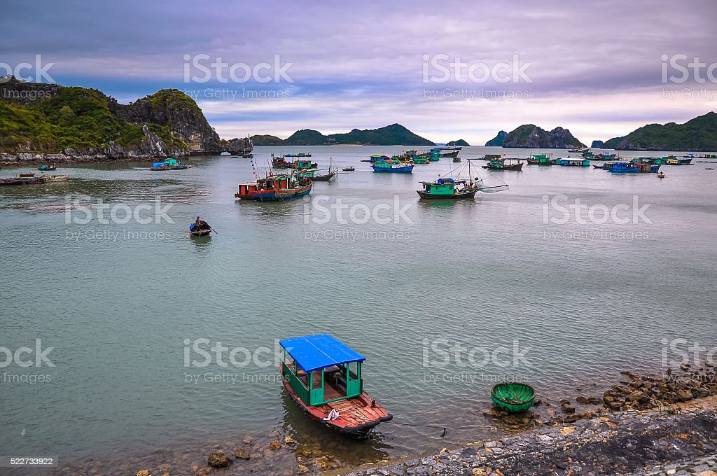 Many fishing boats anchored near the island of Cat Ba stock photo