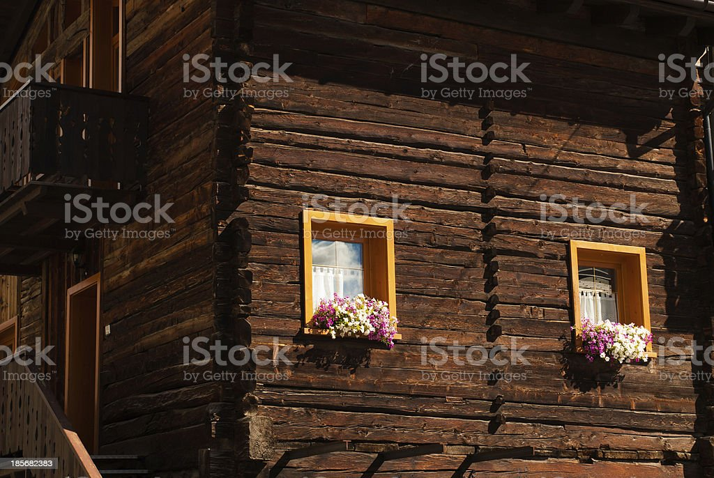 Many flowers in a window-abstract royalty-free stock photo
