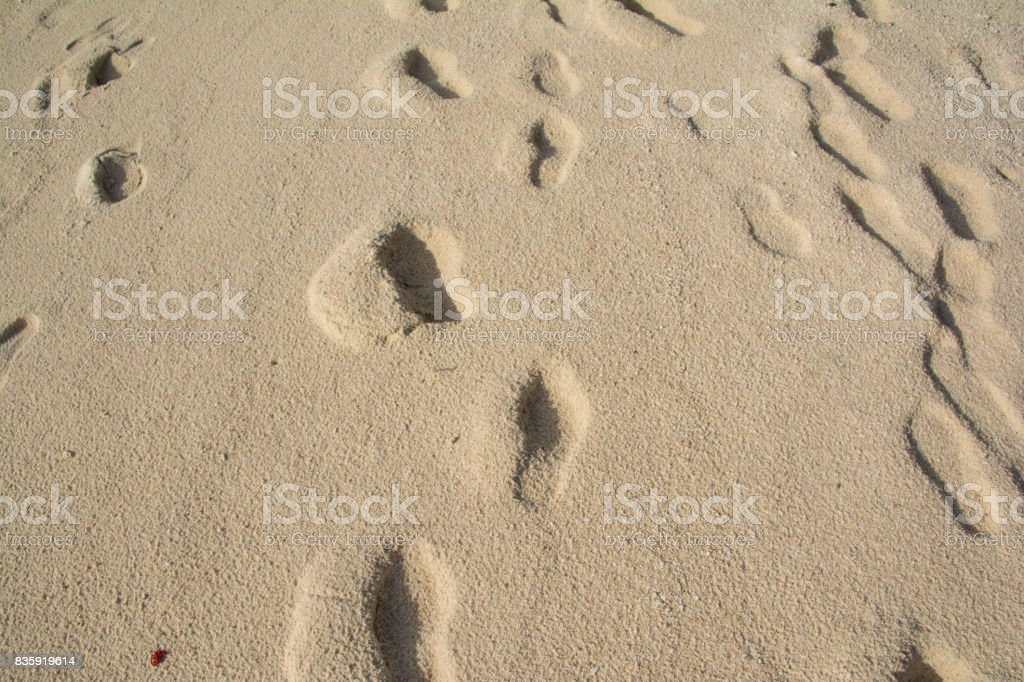 many footprints on the beach, sand stock photo