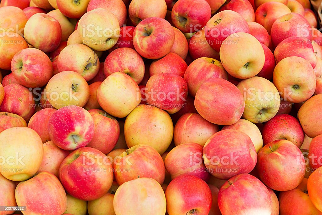 Many fresh crabapple in a pile stock photo
