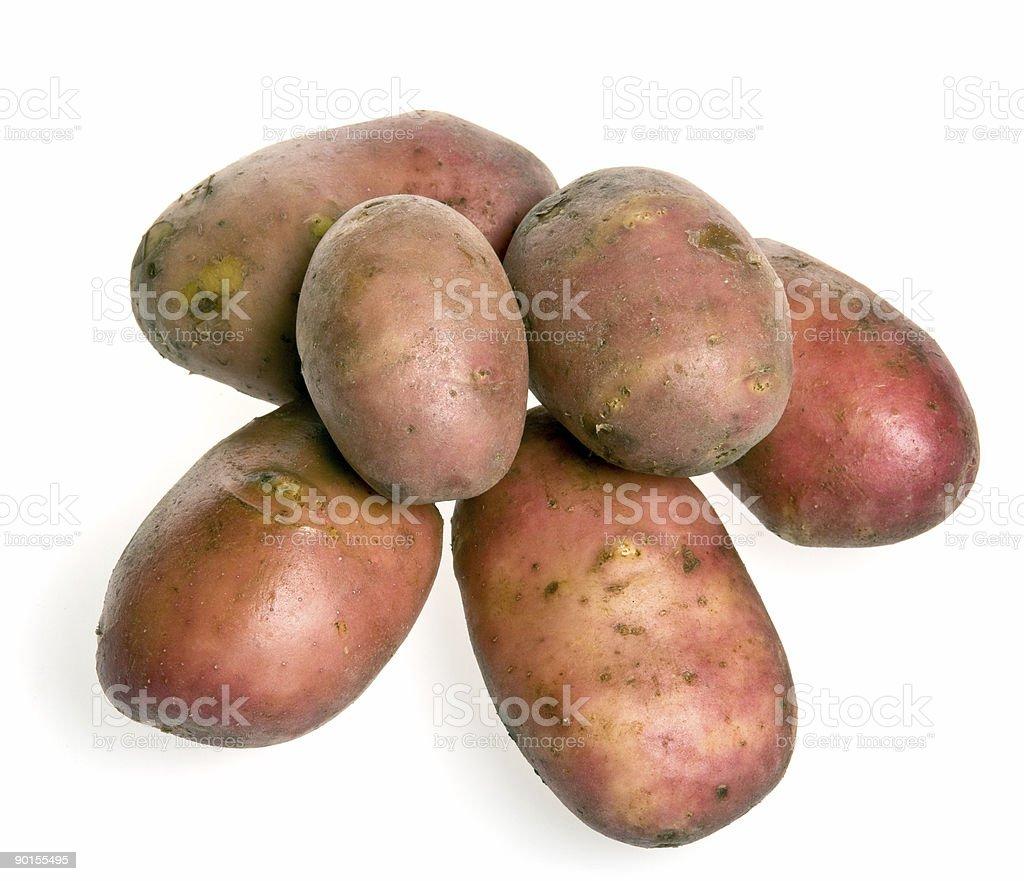 many potatoes royalty-free stock photo