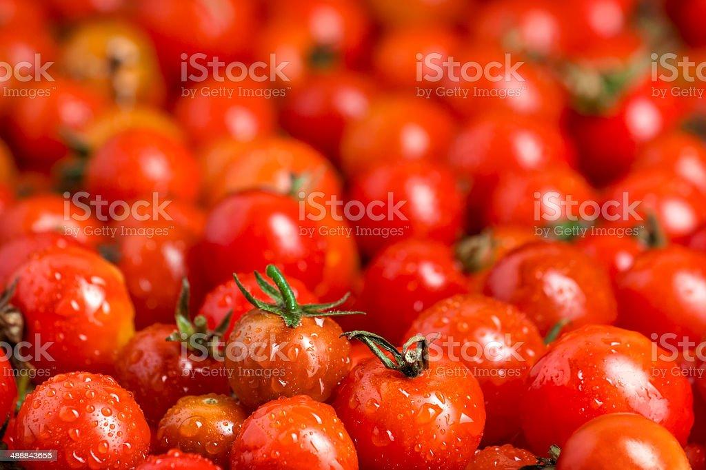 Muchos rojo tomates cherry foto de stock libre de derechos