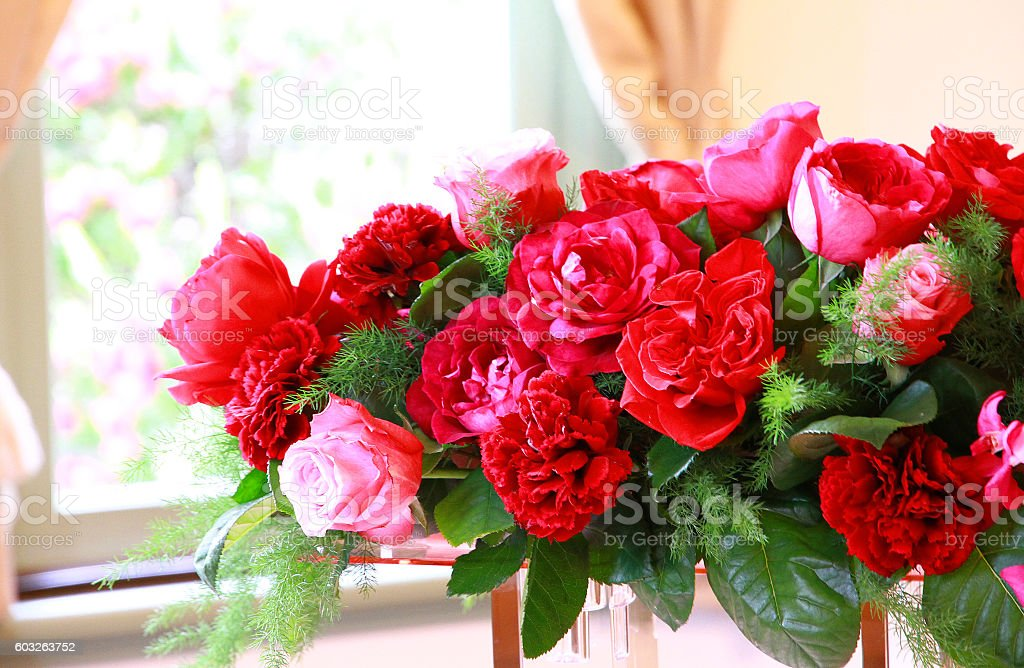 Many red roses stock photo