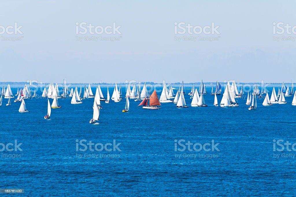 Many sail ships on the ocean horizon royalty-free stock photo
