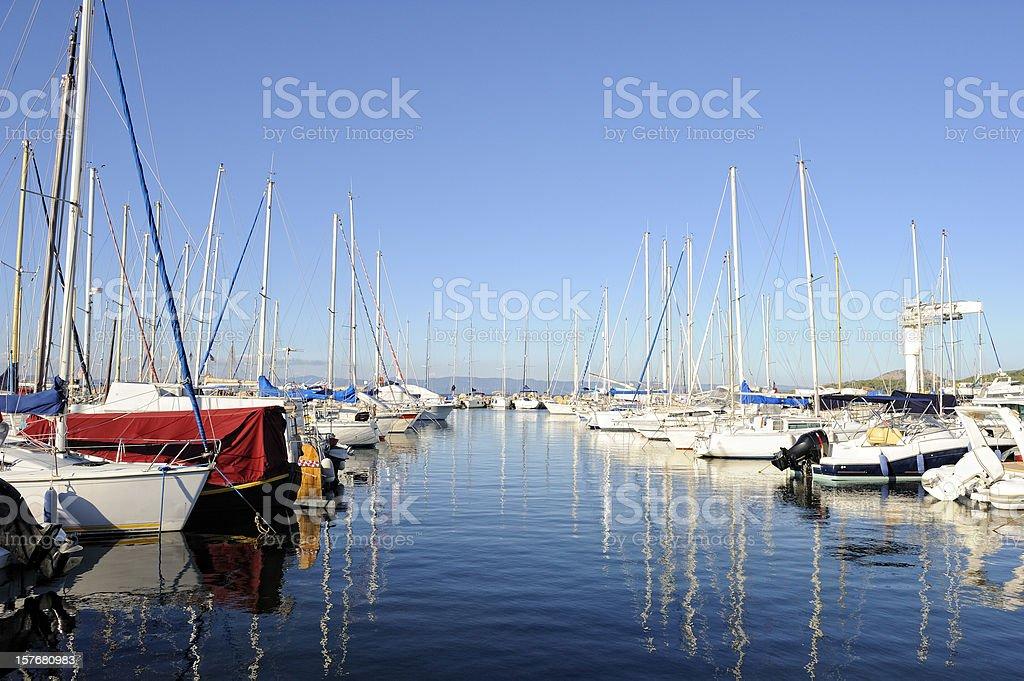 Many Sailboats in a Marina royalty-free stock photo