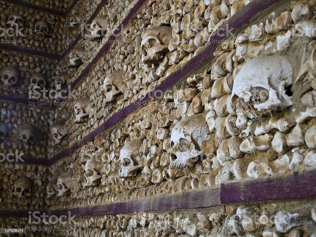 Many skulls royalty-free stock photo