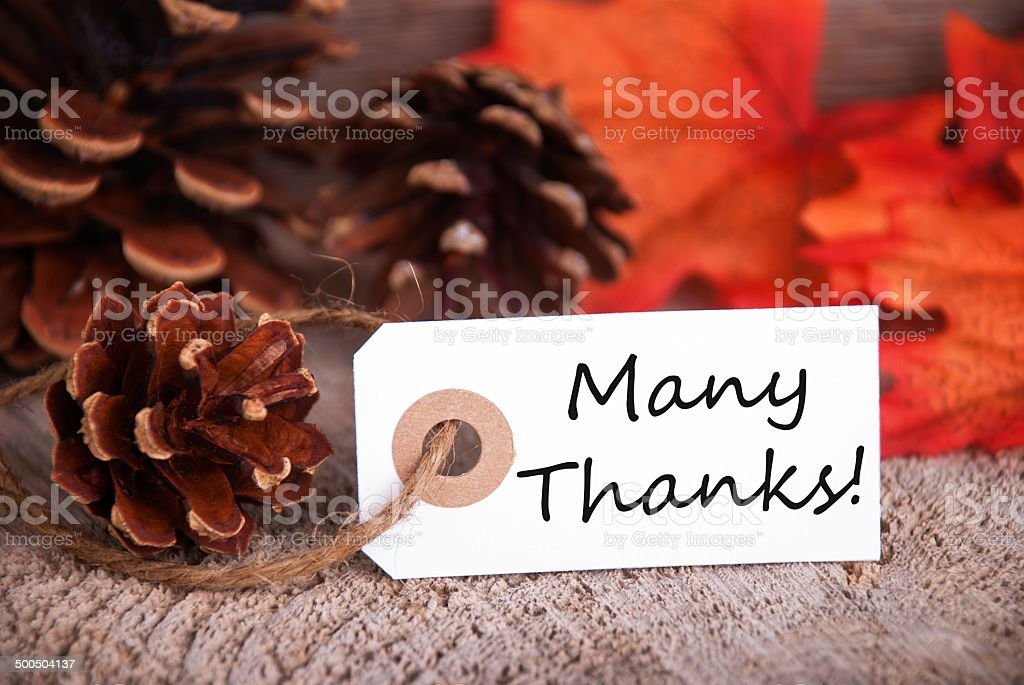 Many Thanks on a Fall Label stock photo