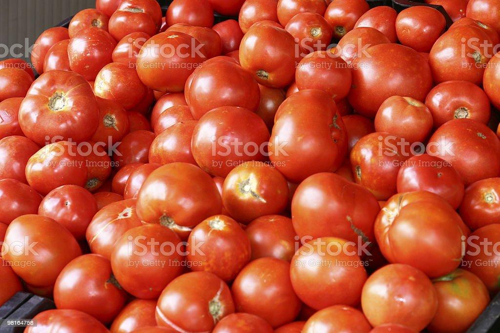 many tomatoes royalty-free stock photo