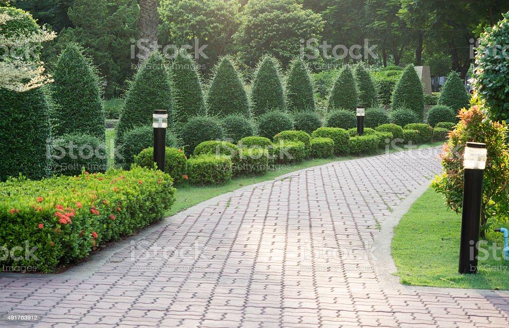 Many tree and Stone pathway into garden. stock photo