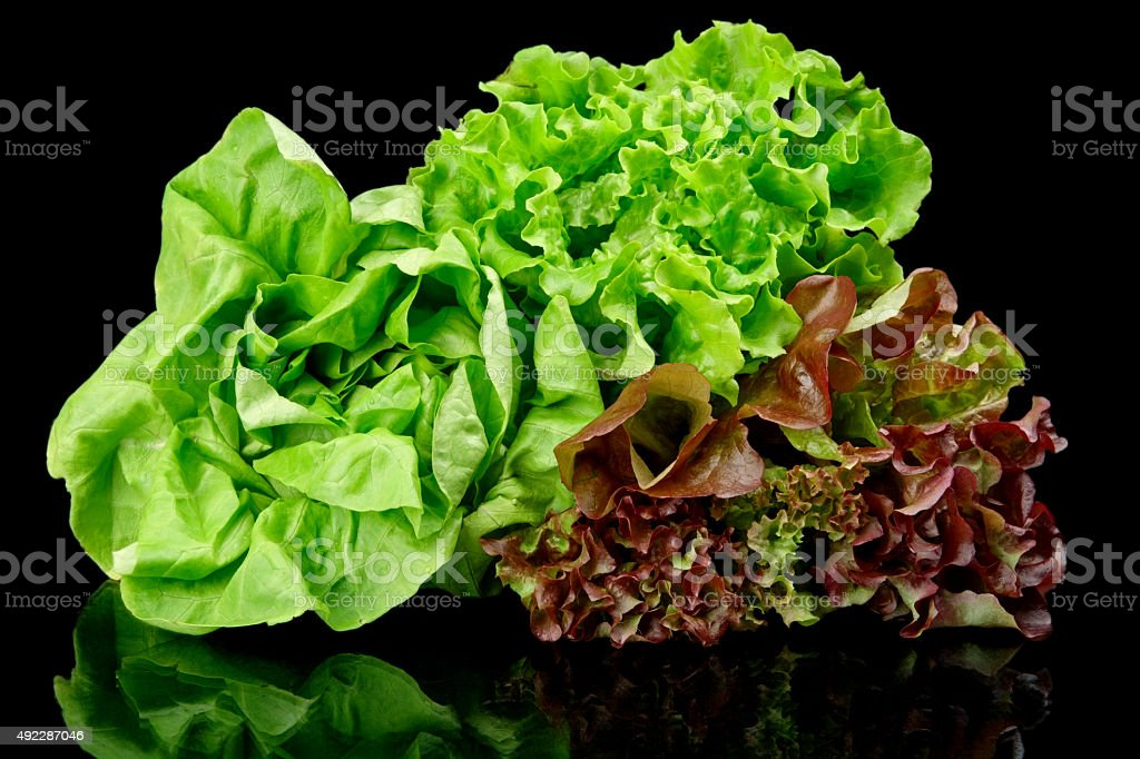 Many varieties of lettuce on black stock photo