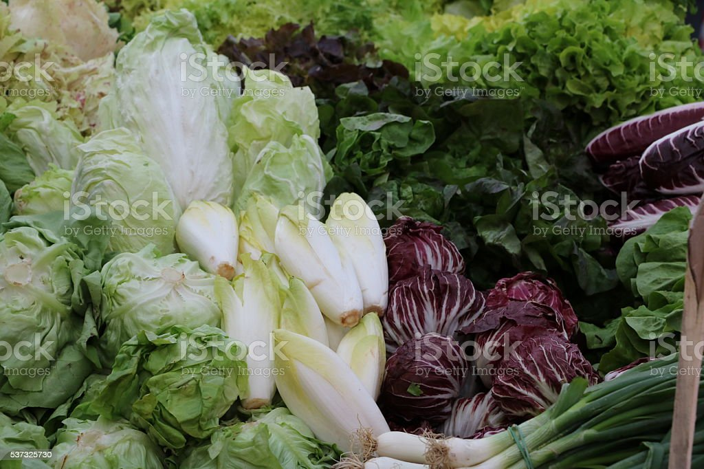 many varieties of lettuce on the weekly market, Italy stock photo