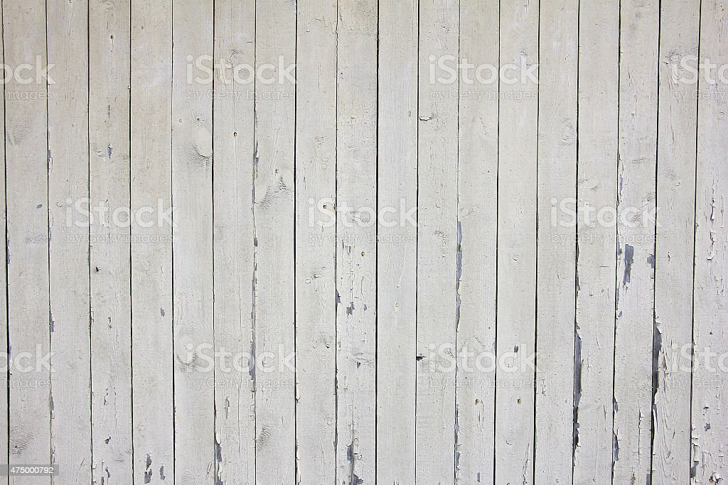 many vertical beige wooden planks with nails, texture stock photo