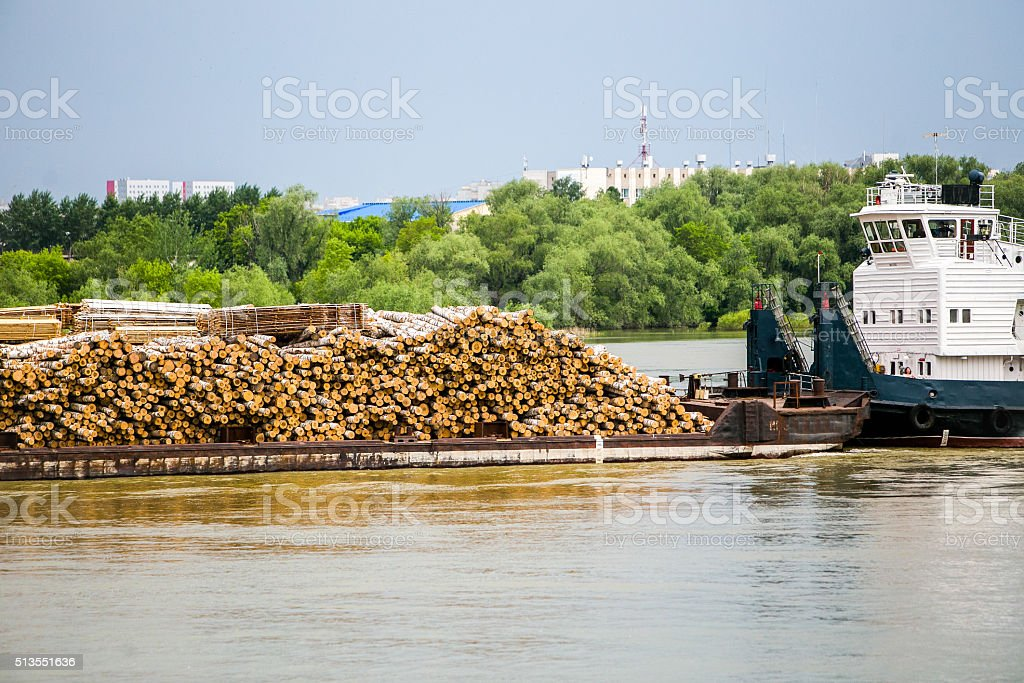 Many wooden logs transported on boat by water stock photo